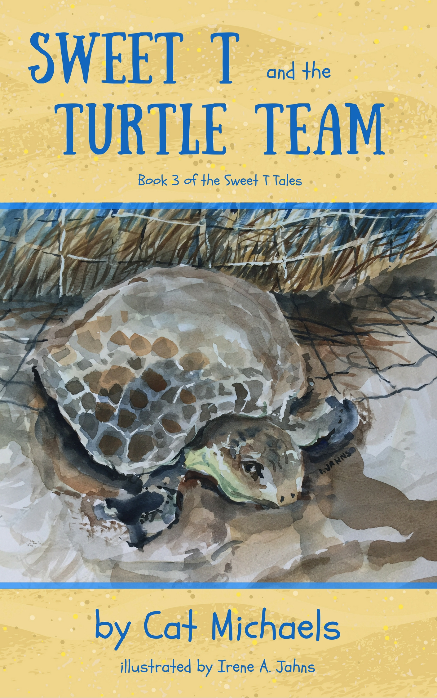 0_TurtleTeamCover